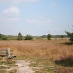omgeving camping de Bovenberg